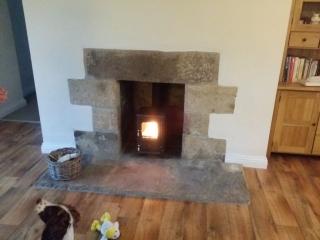 Salamander Hobbit in stone fireplace